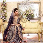 2014 Fashion Dresses For Walima