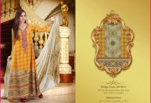 2PC Embroidered Raw Silk With Shafoon Dupatta-3