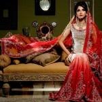 Pakistani Wedding Dresses 2014 For Bridal Pakistani Wedding Dresses 2014 For Bridal Bridal Wear Collection Pakistani Bridal and Wedding Dresses 02 150x150