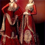 Pakistani Wedding Dresses 2014 For Bridal Pakistani Wedding Dresses 2014 For Bridal Bridal Wear Collection Pakistani Bridal and Wedding Dresses 03 150x150