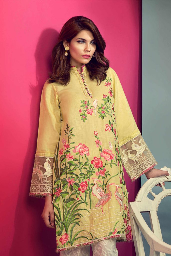 Mandarin Pakistani Dress Design