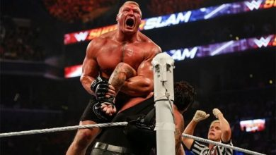 Brock Lesnar One Year Ban For Ring